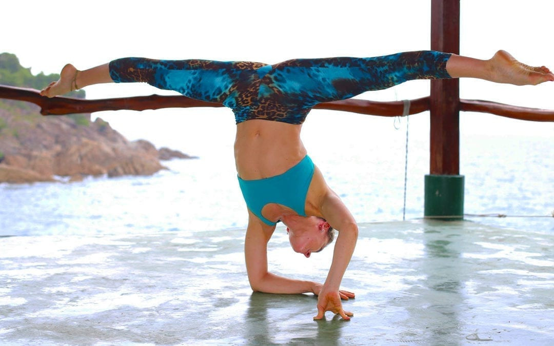 Dharma Mittra and rocket Easter retreat with Ambra Vallo
